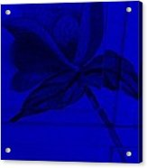 Blue Wood Flower Acrylic Print