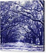Blue World In Savannah Acrylic Print