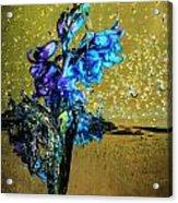 Bluebells In Water Splash Acrylic Print