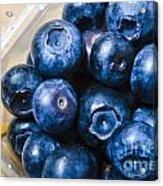 Blueberries Punnet Acrylic Print
