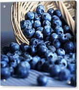 Blueberries Spilling From Wicker Basket Kitchen Art Acrylic Print