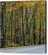Blueridge Parkway Virginia Acrylic Print