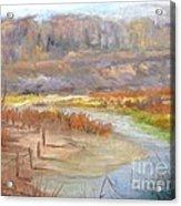 Bluff Canyon Overlook Acrylic Print