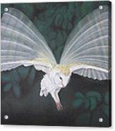 Blurred Wings Acrylic Print