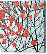Blushing Blossoms Acrylic Print