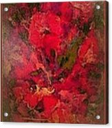 Blushing Red Flowers  Acrylic Print