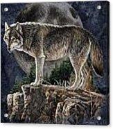 Bm Wolf Moon Acrylic Print by JQ Licensing