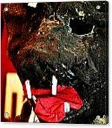 Boar Mask Acrylic Print