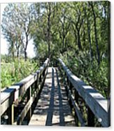 Boardwalk At Tifft Nature Preserve Buffalo New York Acrylic Print