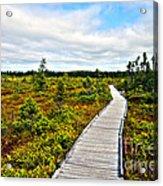 Orono Boardwalk Acrylic Print