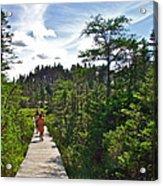 Boardwalk In Salmonier Nature Park-nl Acrylic Print