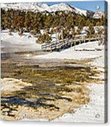 Boardwalk In The Park Acrylic Print
