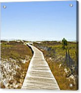 Boardwalk Acrylic Print by Susan Leggett