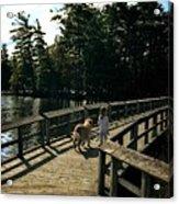 Boardwalking Acrylic Print