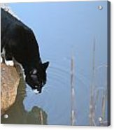 Boat Drinking From Pond Acrylic Print