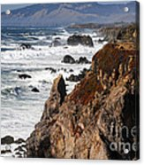 Bodega Bay Color Acrylic Print