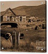 Bodie   #72986 Acrylic Print