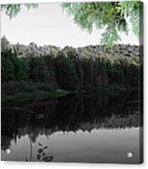 Bog River Acrylic Print