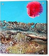 Bogomil Sunrise 2 Acrylic Print