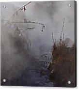 Boiling River  Ynp    Acrylic Print