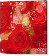Bokeh Roses Acrylic Print by Cheryl Young
