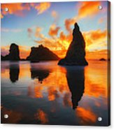 Boldly Bandon Acrylic Print by Darren  White