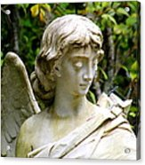 Bonaventure Angels Series - Clipped Wing Acrylic Print