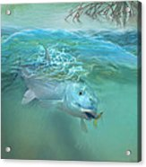 Bone Fish Acrylic Print