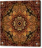 Bone Tapestry 2 Acrylic Print