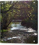 Bonne Femme Creek Acrylic Print