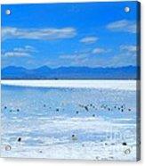 Bonneville Salt Flats After The Rain Acrylic Print