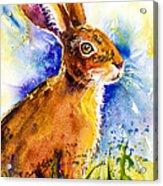 Bonny Bunny Acrylic Print