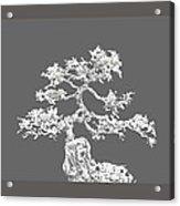 Bonsai II Acrylic Print