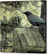 Book Of Wisdom Acrylic Print
