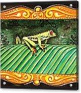 Puravida Frog Acrylic Print