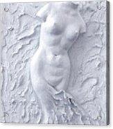 Born Again Acrylic Print by Elena Fattakova