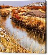 Bosque Canal Acrylic Print