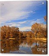 Bosque Del Apache Reflections Acrylic Print
