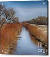 Bosque Del Apache Wetlands- New Mexico Acrylic Print