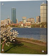 Boston Charles River On A Spring Day Acrylic Print