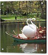 Boston Swan Boats Acrylic Print