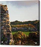 Botallack Fox At Sunset Acrylic Print