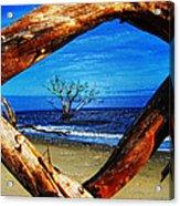 Charleston Sc Botany Bay Acrylic Print by Ella Char