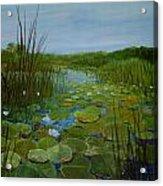 Botswana Lagoon Acrylic Print
