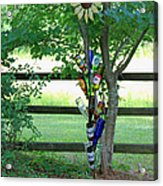 Bottle Tree Acrylic Print by Suzanne Gaff
