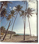 Bottom Bay Tropical Beach In Barbados Caribbean Acrylic Print