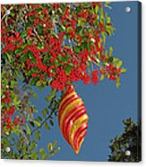 Boughs Of Holly Acrylic Print