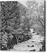 Boulder Creek Winter Wonderland Black And White Acrylic Print
