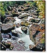 Boulder Stream Acrylic Print