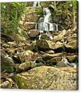 Boulders Logs And Lower Laurel Falls Acrylic Print